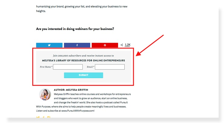 Melyssa Griffin sales funnel examples