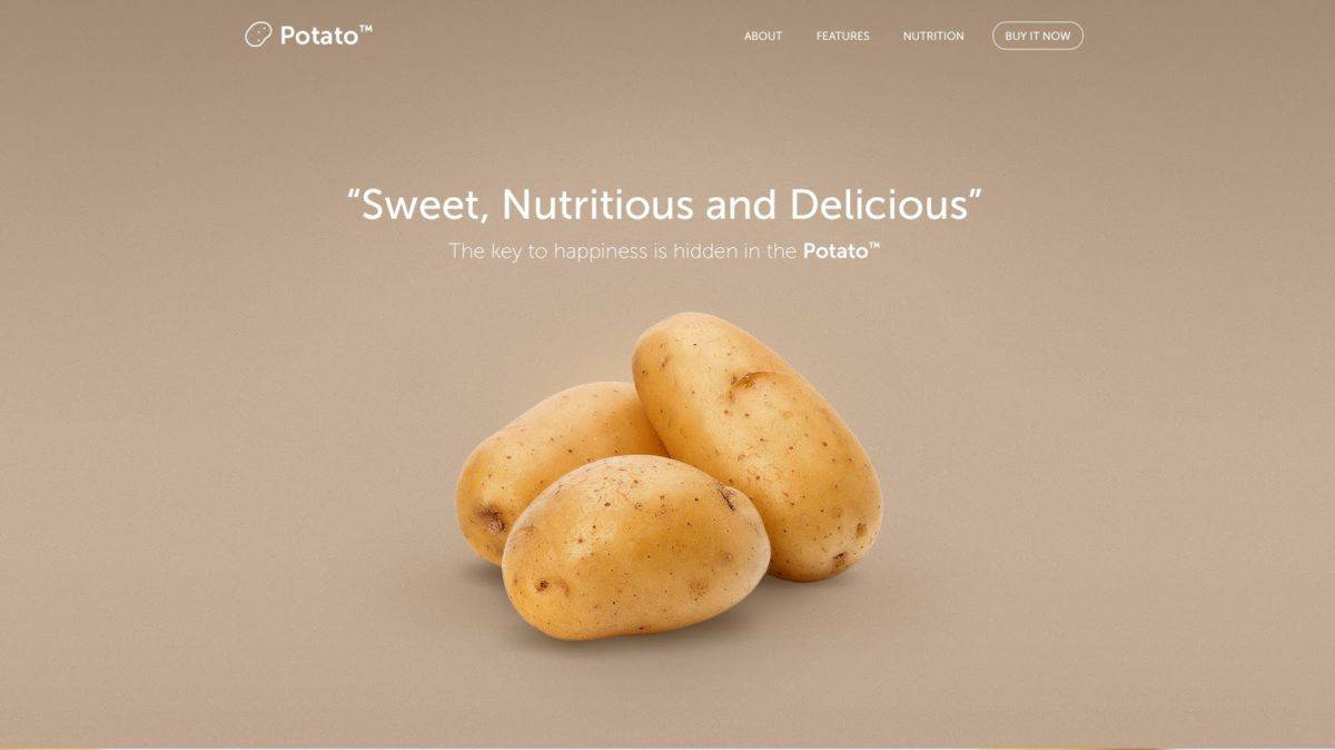 Starting a freelance business sample potato landing page by Eldin Heric