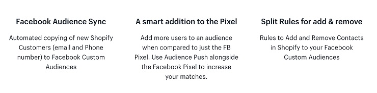 Ecommerce tools like audience push updates faceboook custom audiences automatically